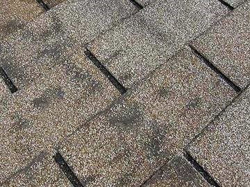 g2 - GAF's guide to key signs of roof damage